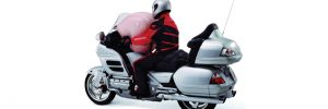 Gold Wing Technology - Airbag